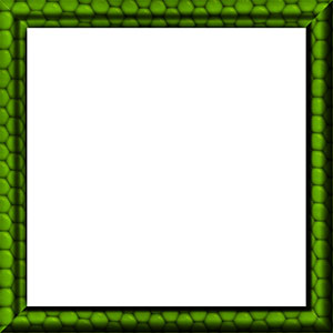 green, black and white border with hexagons