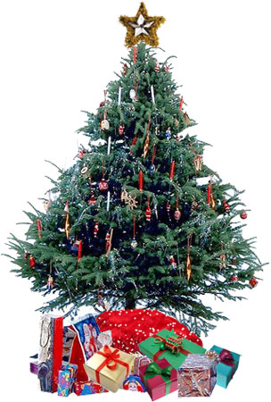 large Christmas tree with presents